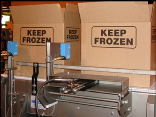 Frozen Food Conveyor